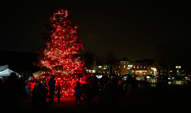 tree-lighting-2013