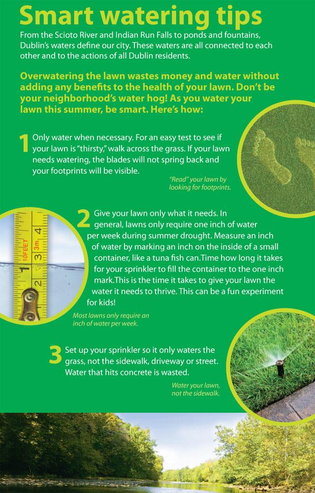 smart-watering-tips