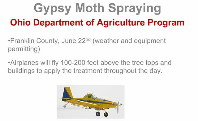 gypsy-moth-spryaing